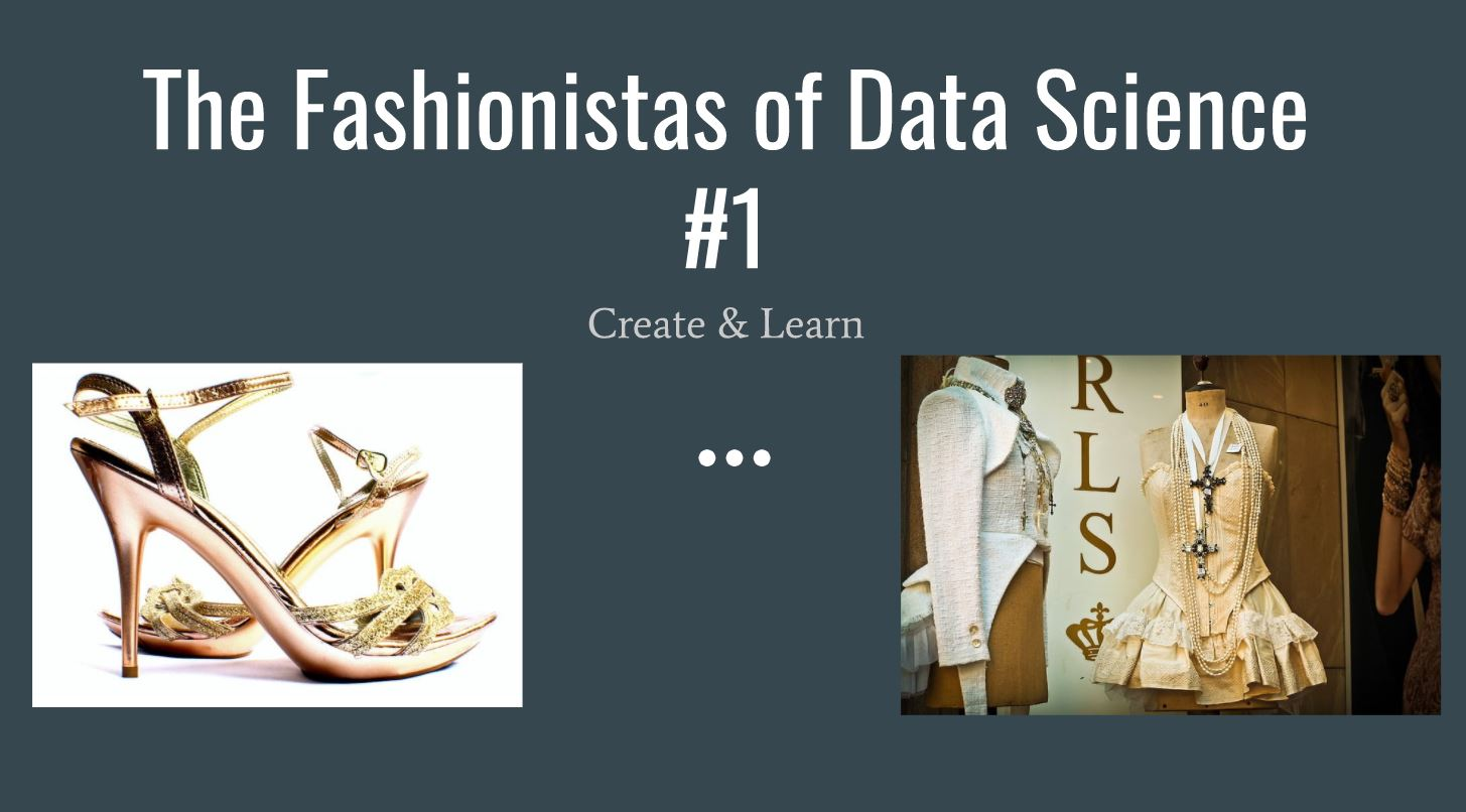 Fashionista of Data Science #1